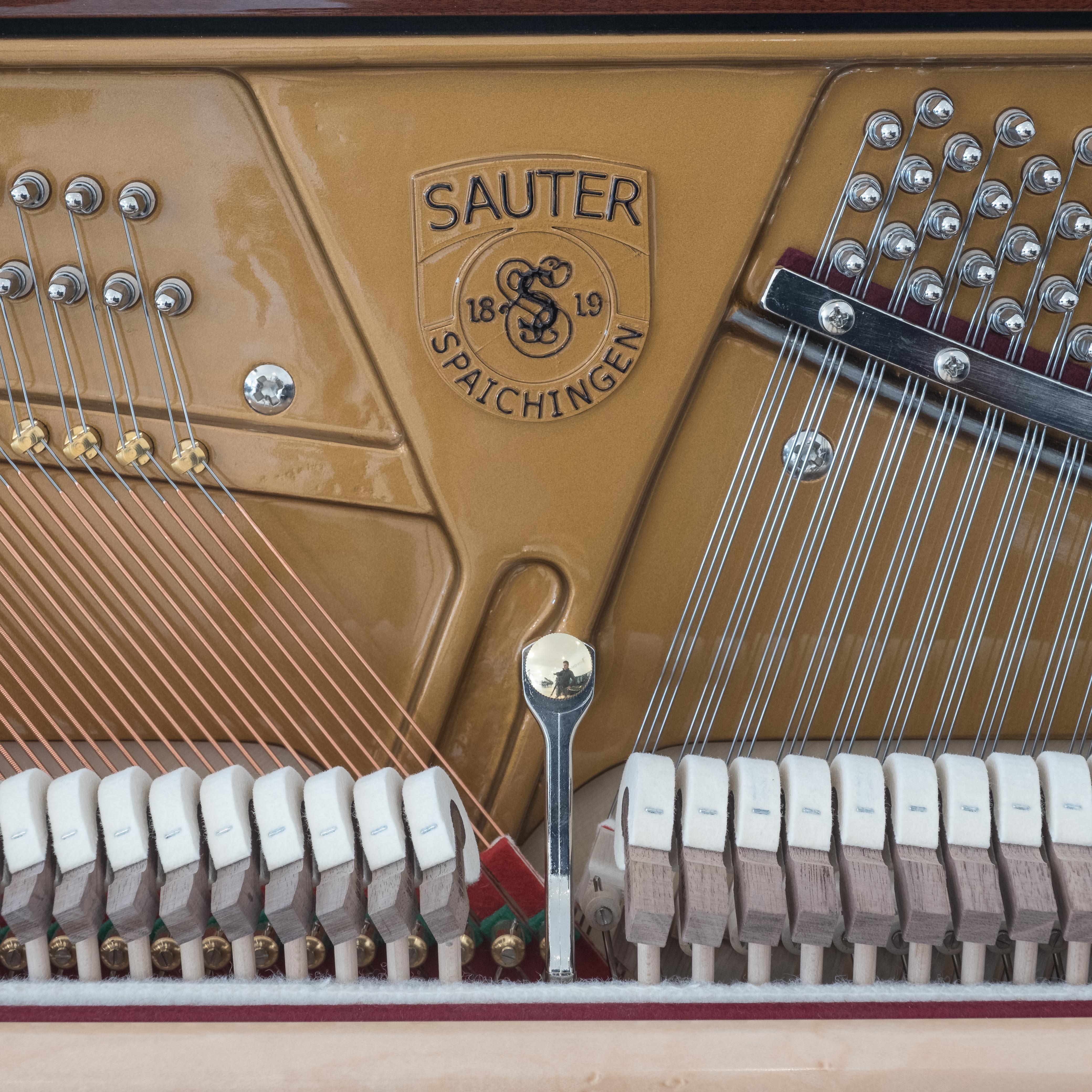 Sauter 130 mahogany 12221 DSCF1489