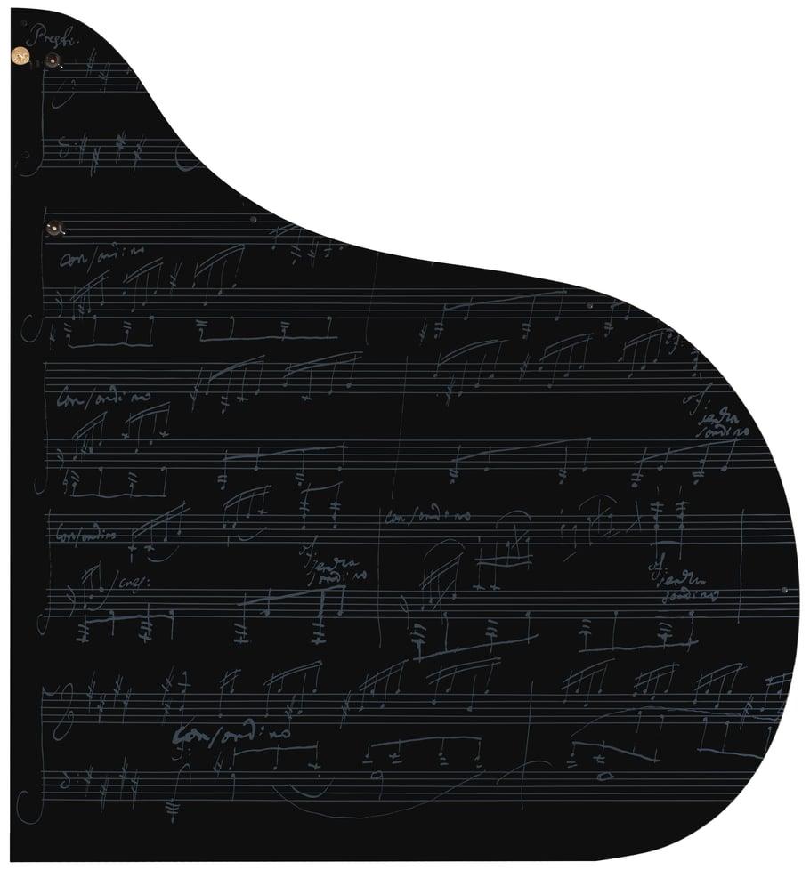 piano lid
